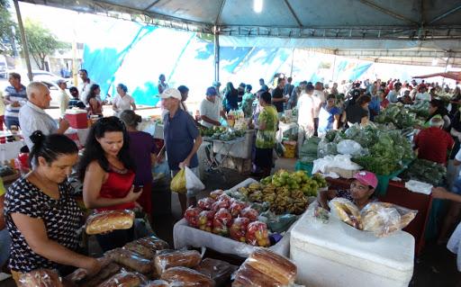 Em Gurupi novo decreto autoriza funcionamento da feira do produtor,  academias de ginástica e a realização de treinamentos táticos